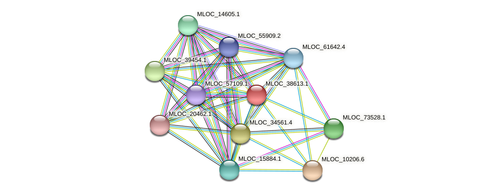 MLOC_38613.1 protein (Hordeum vulgare) - STRING interaction network