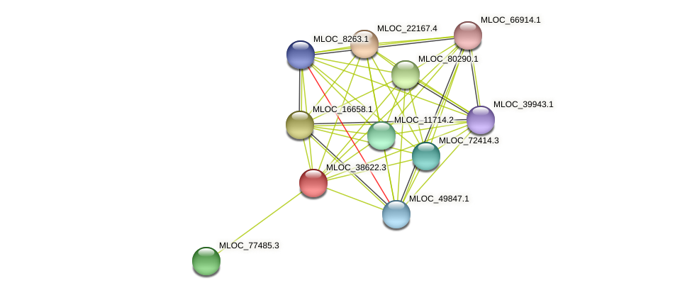 MLOC_38622.3 protein (Hordeum vulgare) - STRING interaction network