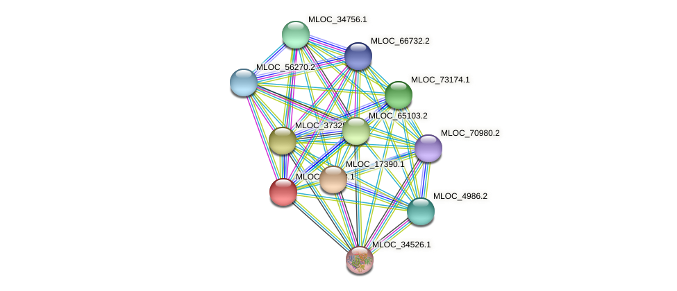 MLOC_38658.1 protein (Hordeum vulgare) - STRING interaction network
