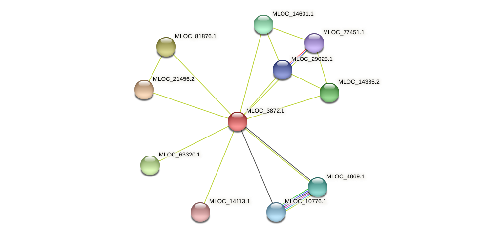 MLOC_3872.1 protein (Hordeum vulgare) - STRING interaction network