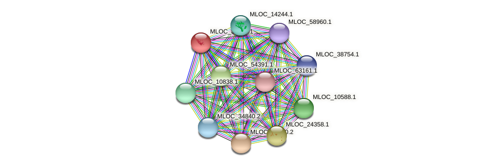 MLOC_38730.1 protein (Hordeum vulgare) - STRING interaction network