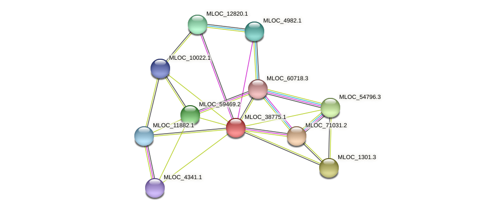 MLOC_38775.1 protein (Hordeum vulgare) - STRING interaction network