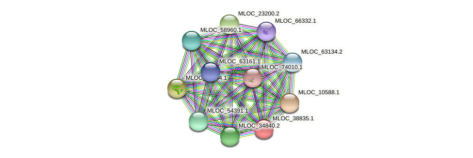 MLOC_38835.1 protein (Hordeum vulgare) - STRING interaction network