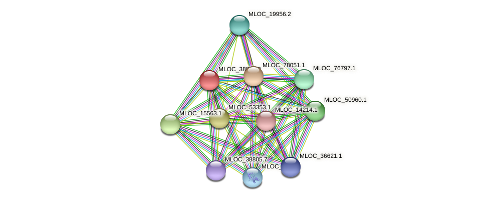MLOC_38841.2 protein (Hordeum vulgare) - STRING interaction network