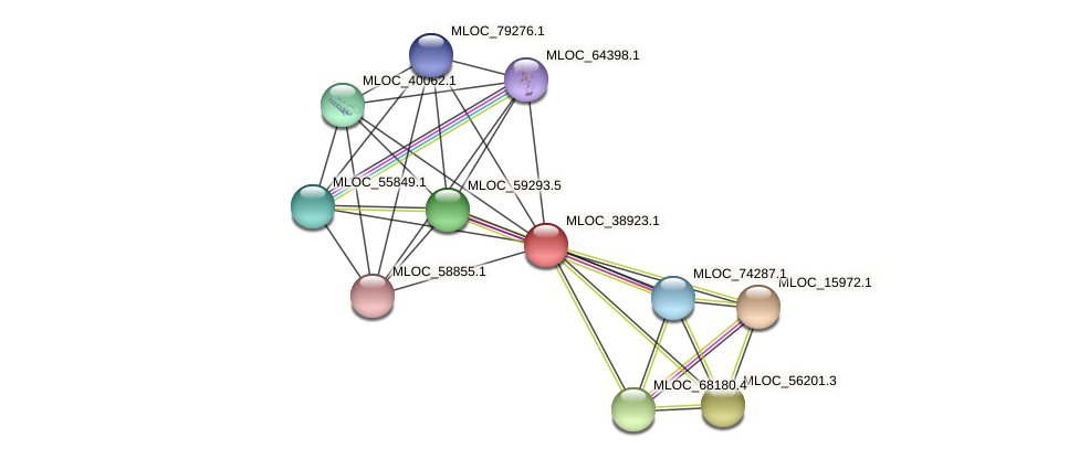 MLOC_38923.1 protein (Hordeum vulgare) - STRING interaction network