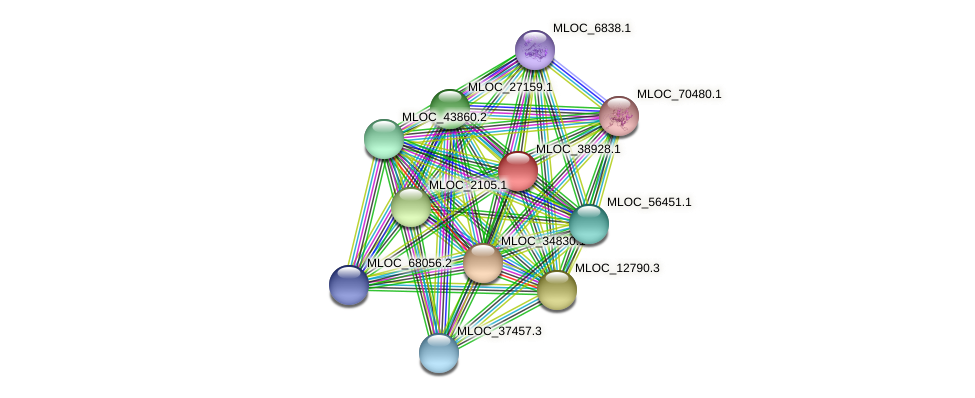 MLOC_38928.1 protein (Hordeum vulgare) - STRING interaction network
