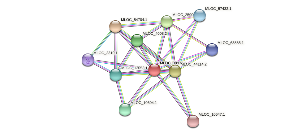 MLOC_38932.1 protein (Hordeum vulgare) - STRING interaction network