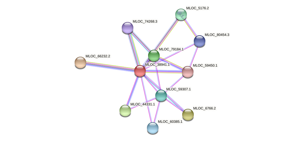 MLOC_38941.1 protein (Hordeum vulgare) - STRING interaction network