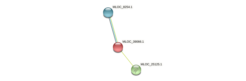 MLOC_39066.1 protein (Hordeum vulgare) - STRING interaction network