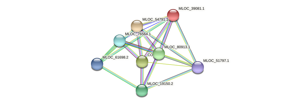 MLOC_39081.1 protein (Hordeum vulgare) - STRING interaction network