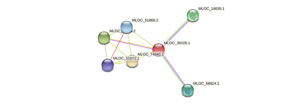 MLOC_39105.1 protein (Hordeum vulgare) - STRING interaction network
