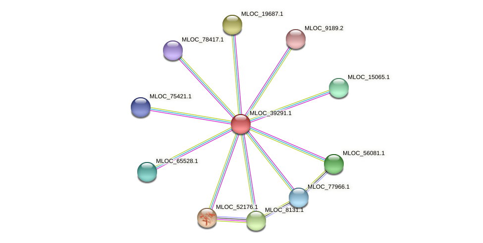 MLOC_39291.1 protein (Hordeum vulgare) - STRING interaction network