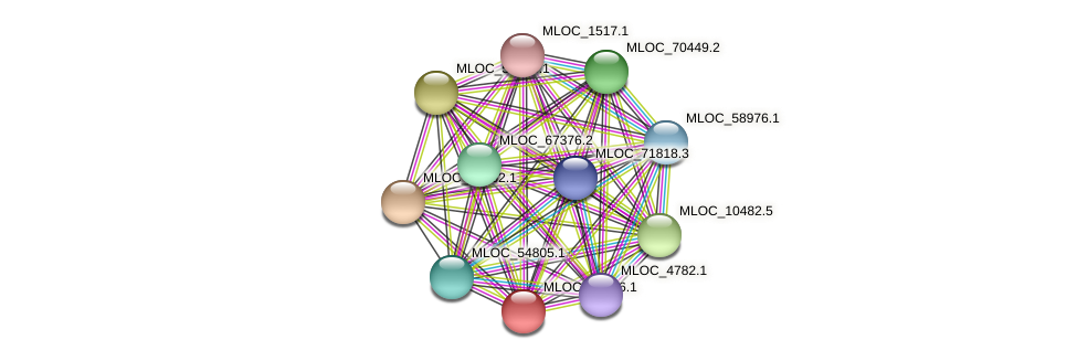 MLOC_39386.1 protein (Hordeum vulgare) - STRING interaction network