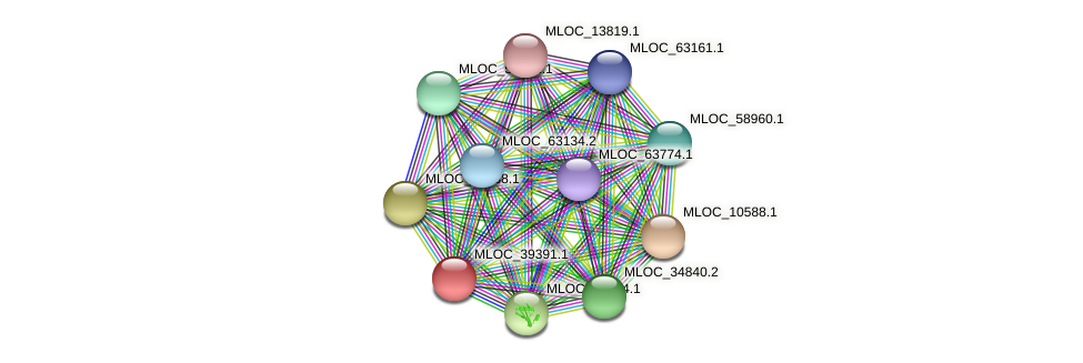 MLOC_39391.1 protein (Hordeum vulgare) - STRING interaction network