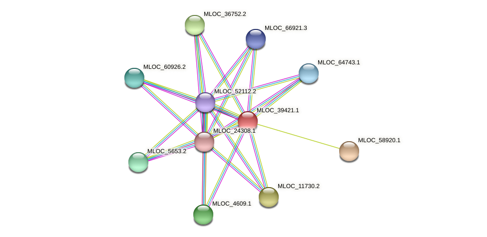 MLOC_39421.1 protein (Hordeum vulgare) - STRING interaction network