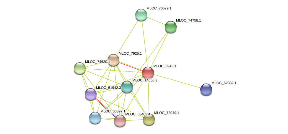 MLOC_3943.1 protein (Hordeum vulgare) - STRING interaction network