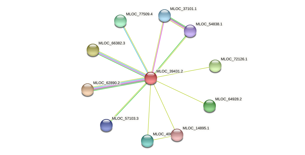MLOC_39431.2 protein (Hordeum vulgare) - STRING interaction network