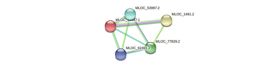 MLOC_39447.1 protein (Hordeum vulgare) - STRING interaction network