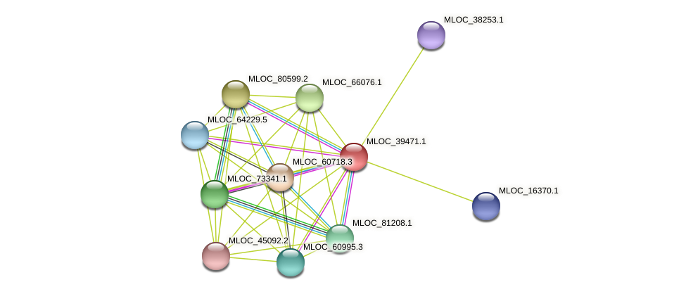 MLOC_39471.1 protein (Hordeum vulgare) - STRING interaction network