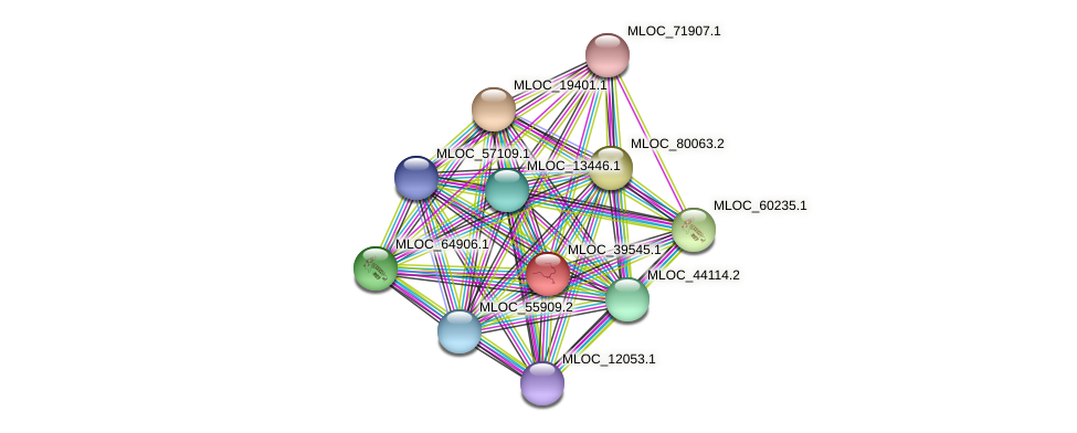 MLOC_39545.1 protein (Hordeum vulgare) - STRING interaction network