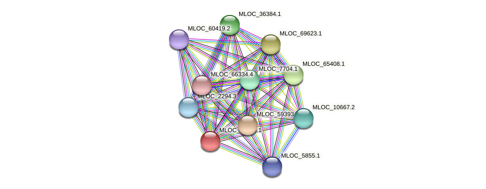 MLOC_39610.1 protein (Hordeum vulgare) - STRING interaction network