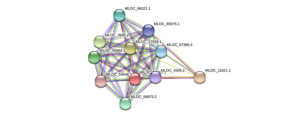 MLOC_39655.1 protein (Hordeum vulgare) - STRING interaction network