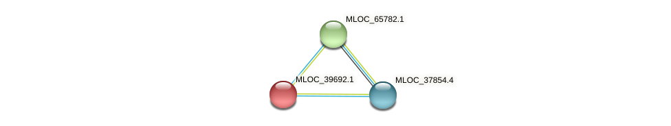 MLOC_39692.1 protein (Hordeum vulgare) - STRING interaction network