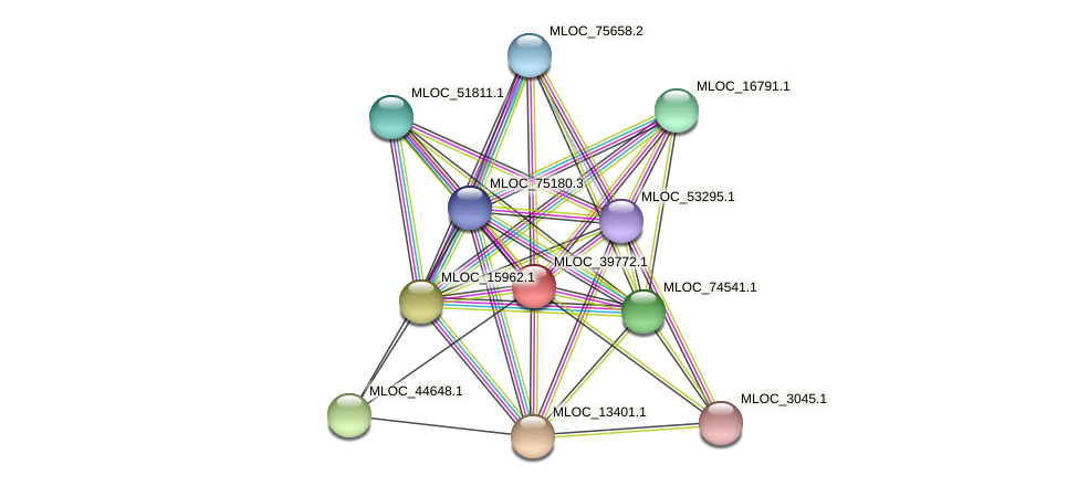 MLOC_39772.1 protein (Hordeum vulgare) - STRING interaction network