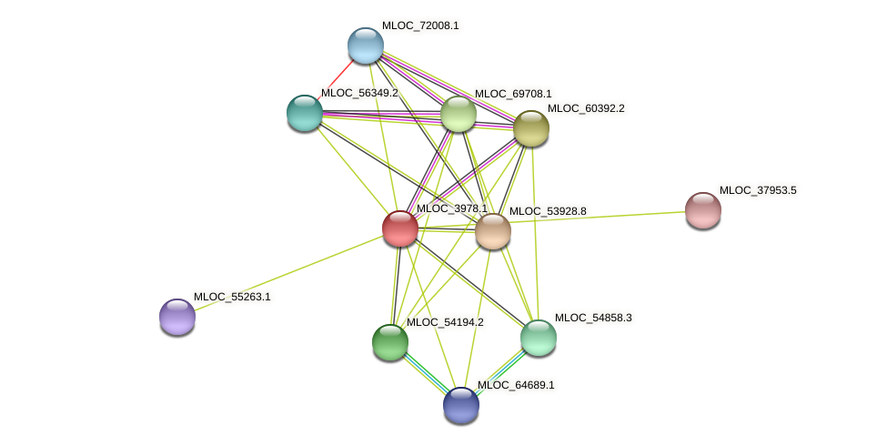 MLOC_3978.1 protein (Hordeum vulgare) - STRING interaction network