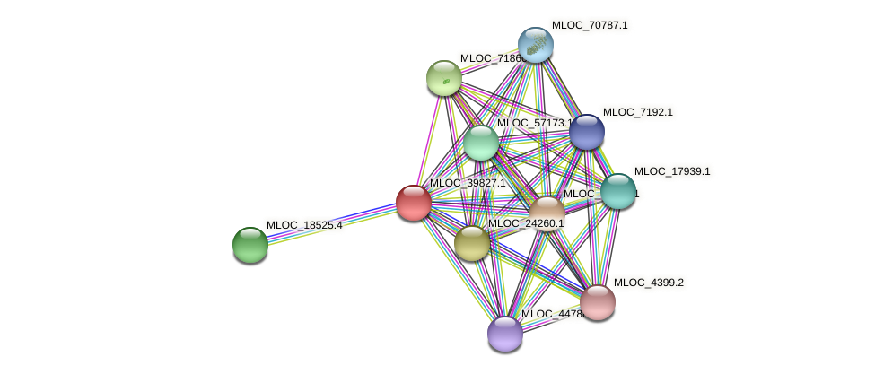 MLOC_39827.1 protein (Hordeum vulgare) - STRING interaction network