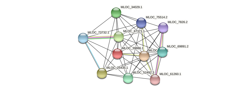 MLOC_39886.1 protein (Hordeum vulgare) - STRING interaction network