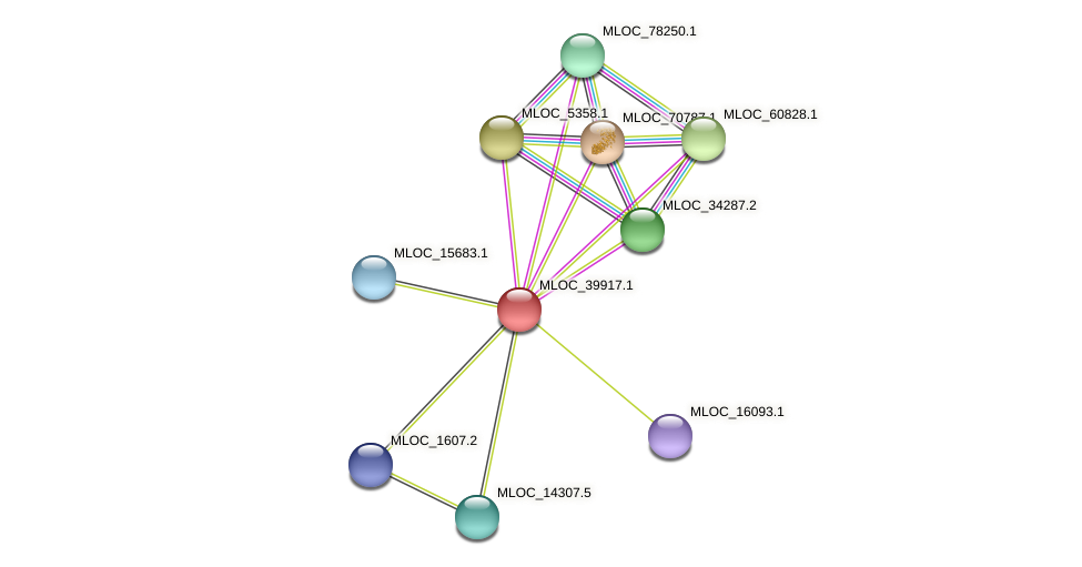 MLOC_39917.1 protein (Hordeum vulgare) - STRING interaction network