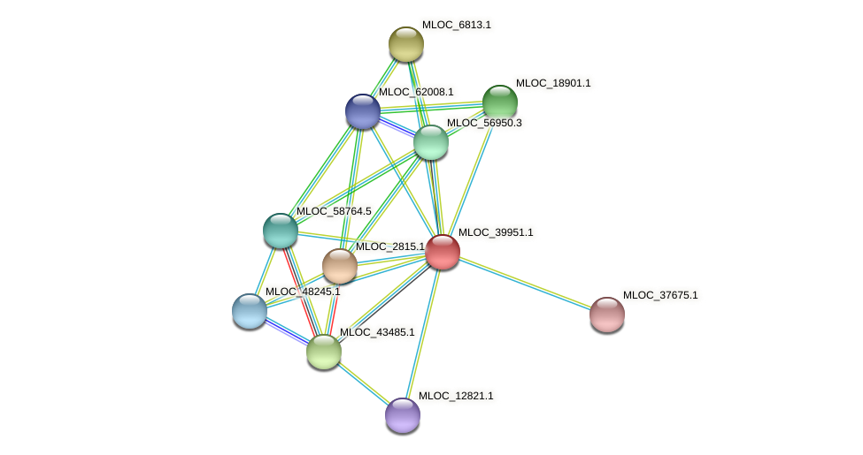 MLOC_39951.1 protein (Hordeum vulgare) - STRING interaction network