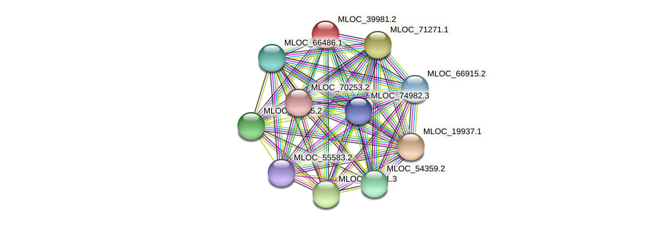 MLOC_39981.2 protein (Hordeum vulgare) - STRING interaction network