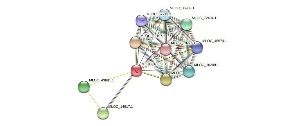 MLOC_40062.1 protein (Hordeum vulgare) - STRING interaction network