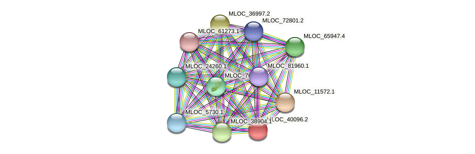 MLOC_40096.2 protein (Hordeum vulgare) - STRING interaction network