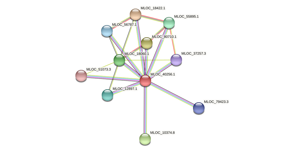 MLOC_40256.1 protein (Hordeum vulgare) - STRING interaction network