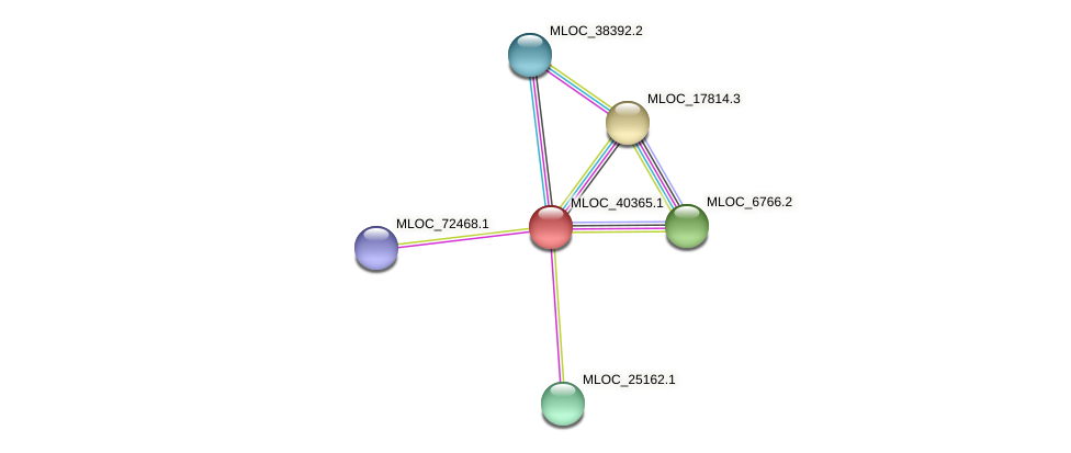 MLOC_40365.1 protein (Hordeum vulgare) - STRING interaction network