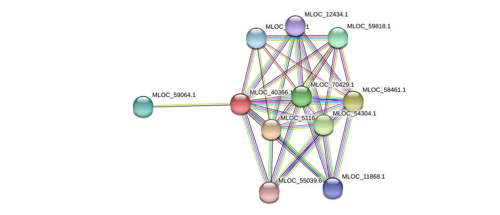 MLOC_40366.1 protein (Hordeum vulgare) - STRING interaction network
