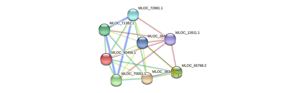 MLOC_40456.1 protein (Hordeum vulgare) - STRING interaction network