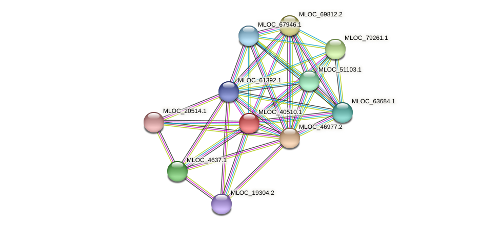 MLOC_40510.1 protein (Hordeum vulgare) - STRING interaction network