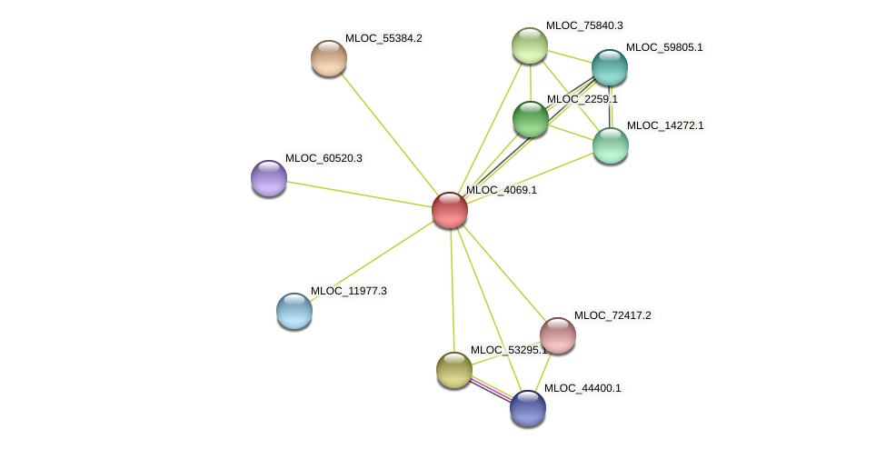MLOC_4069.1 protein (Hordeum vulgare) - STRING interaction network
