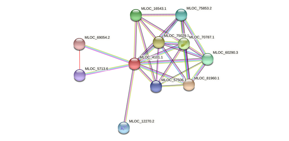 MLOC_4101.1 protein (Hordeum vulgare) - STRING interaction network