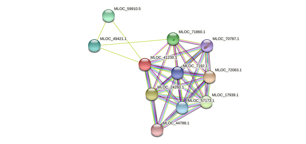 MLOC_41230.1 protein (Hordeum vulgare) - STRING interaction network