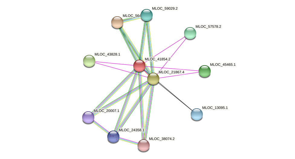 MLOC_41854.2 protein (Hordeum vulgare) - STRING interaction network