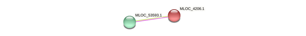 MLOC_4206.1 protein (Hordeum vulgare) - STRING interaction network