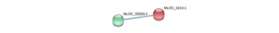 MLOC_4214.1 protein (Hordeum vulgare) - STRING interaction network