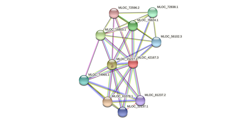 MLOC_42167.3 protein (Hordeum vulgare) - STRING interaction network