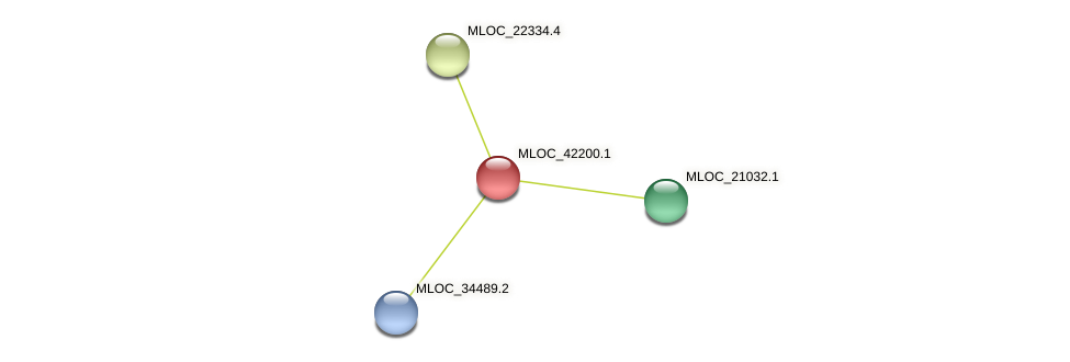 MLOC_42200.1 protein (Hordeum vulgare) - STRING interaction network