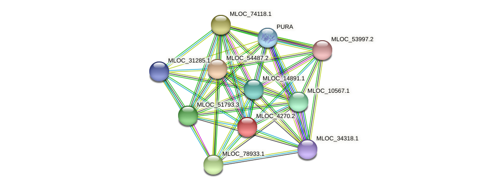 MLOC_4270.2 protein (Hordeum vulgare) - STRING interaction network